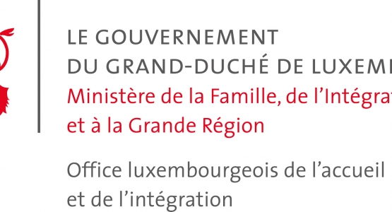 INTERNATIONAL MIGRATION IN LUXEMBOURG Continuous Reporting System on Migration OECD.