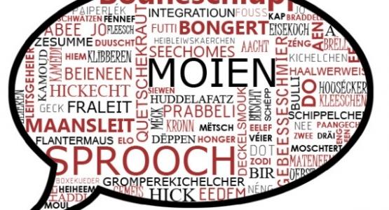 Lëtzebuergesch schwätzen- Table de conversation - Konversationstische - Language Cafe
